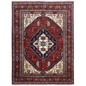Galsworthy Serapi Hand-Woven Wool Red/Beige/Black Area Rug