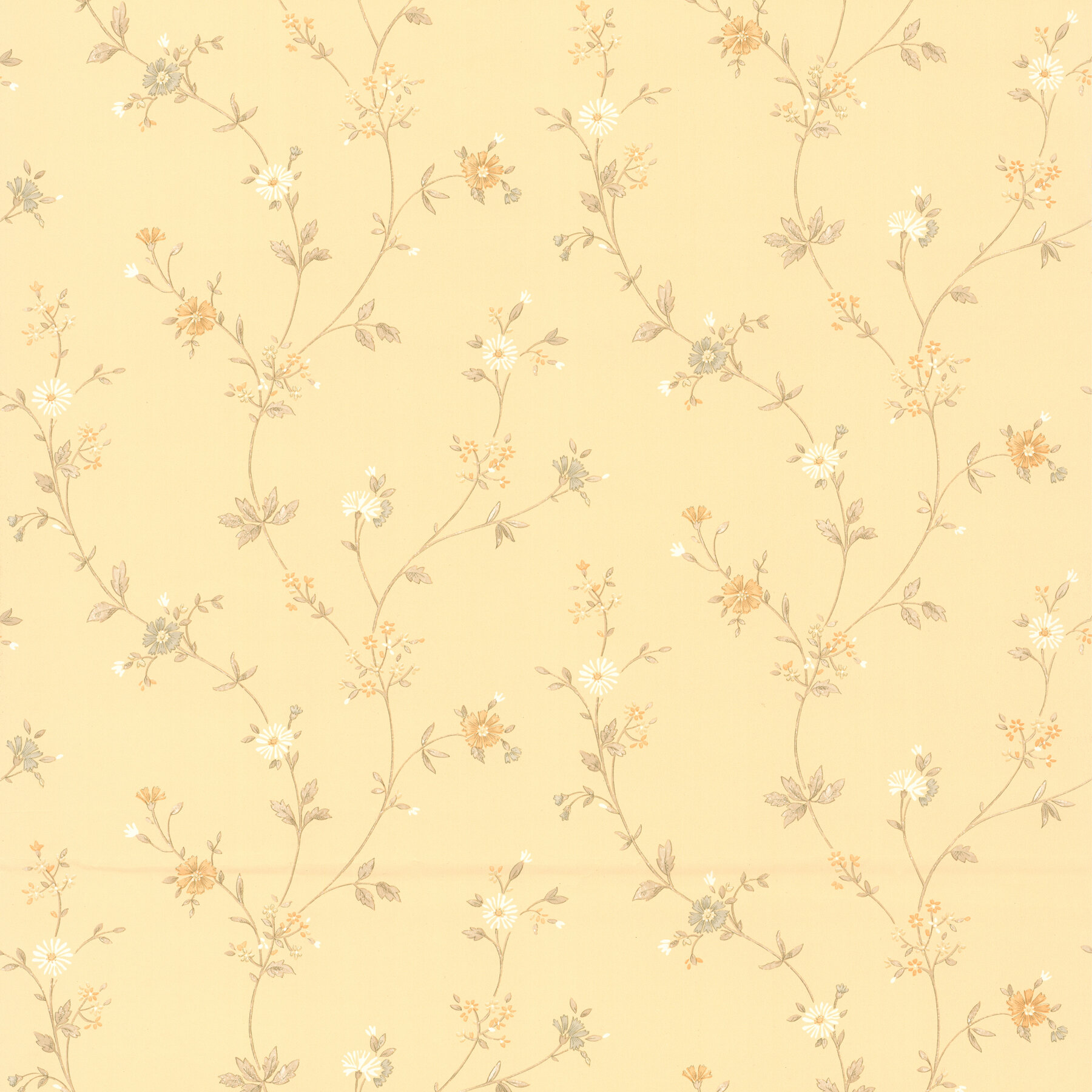 August Grove Aiko Daisy 33 X 20 5 Floral Wallpaper Wayfair