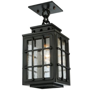 Online Reviews Greenbriar Oak Pontrefract 1-Light Outdoor Hanging Lantern By Meyda Tiffany