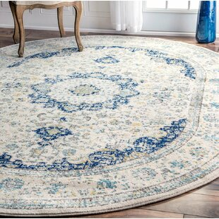 5 6 Area Rugs You Ll Love Wayfair