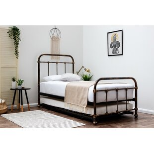 Pereira Daybed With Trundle By Williston Forge