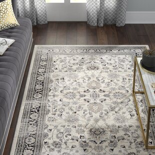 Reviews Kira Floral Cream/Black Area Rug By Willa Arlo Interiors