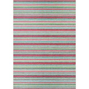 Colesberry Pink/Green Indoor/Outdoor Area Rug