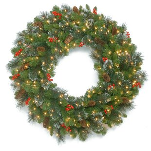 30 spruce lighted wreath