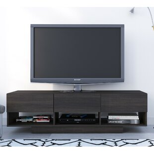Eridanus TV Stand For TVs Up To 66
