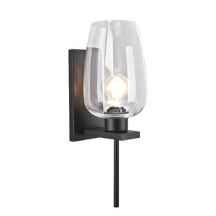 Gracie Oaks Rahsaan Metal 1-Light Bath Sconce