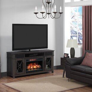 Deloris 63 TV Stand with Fireplace