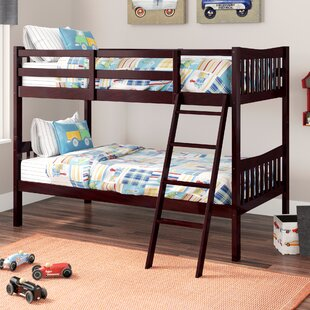Where buy  Root Twin over Twin Bunk Bed by Viv + Rae Reviews (2019) & Buyer's Guide