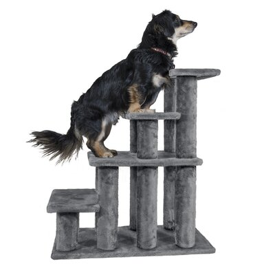 Gray Dog Ramps Amp Stairs You Ll Love In 2020 Wayfair