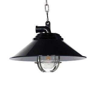 Cocoweb Albury 1-light Outdoor Pendant