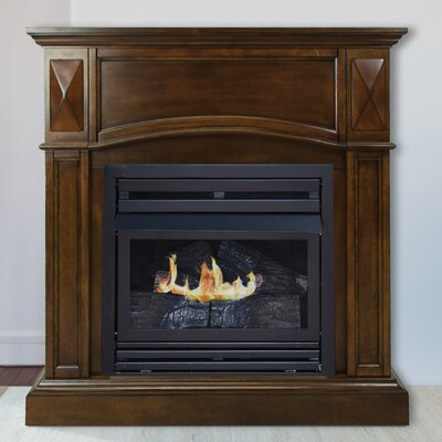 Sheba Vent Free Propane Fireplace Darby Home Co