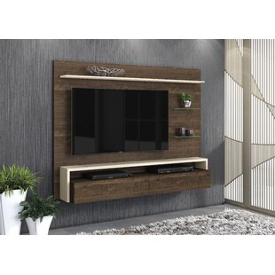 Pugliese Floating Mount Entertainment Center For TVs Up To 58