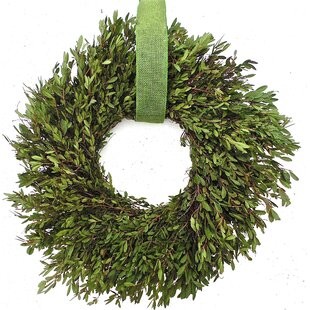 fresh boxwood 22 wreath