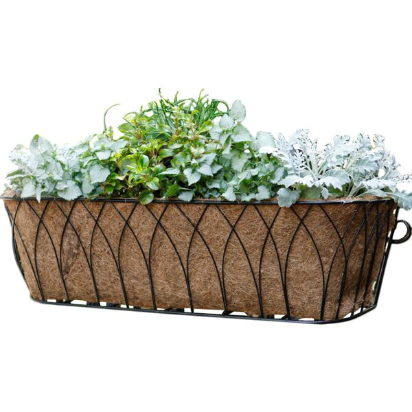 "Window Planter 9/"" x 3/"" x 3/"" Suction Cup attaches to window"