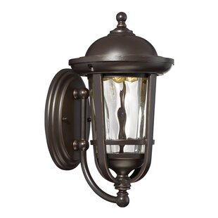Krumm 1-Light Outdoor Wall Lantern