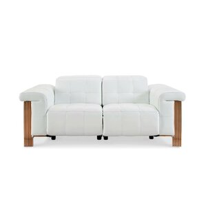 Paine Reclining Loveseat by Orren Ellis