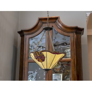 Fleur De Lis Living Nailsworth 3-Light Bowl Pendant