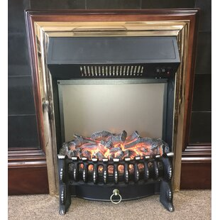 Moser Electric Fireplace insert by Astoria Grand