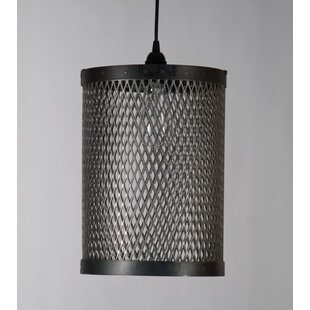 Wire cage drum lighting wayfair cage 1 drum pendant greentooth Image collections