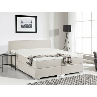 Gaskill Upholstered Panel Bed with Mattress