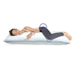 Alwyn Home Big and Soft Over-Filled Extra Long Memory Foam Pillow