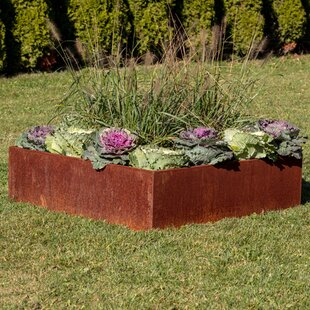 Raised Garden Beds & Elevated Planters You'll | Wayfair.ca on fire pits for garden, stone walls for garden, pavers for garden, window boxes for garden, concrete for garden, landscape design for garden, irrigation for garden, ground cover for garden, steps for garden, arbors for garden, lighting for garden, fencing for garden, benches for garden, decking for garden, furniture for garden, retaining walls for garden,