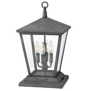 Trellis 4-Light Outdoor Hanging Lantern