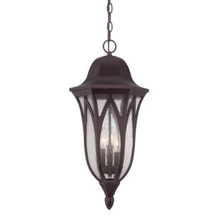 Fleur De Lis Living Besaw 3-Light Hanging Lantern