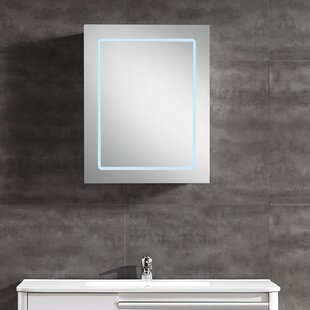 Cassini Medicine Cabinet LED Bathroom/Vanity Mirror by Ove Decors