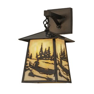 Best Deals Greenbriar Oak 1-Light Outdoor Wall Lantern By Meyda Tiffany