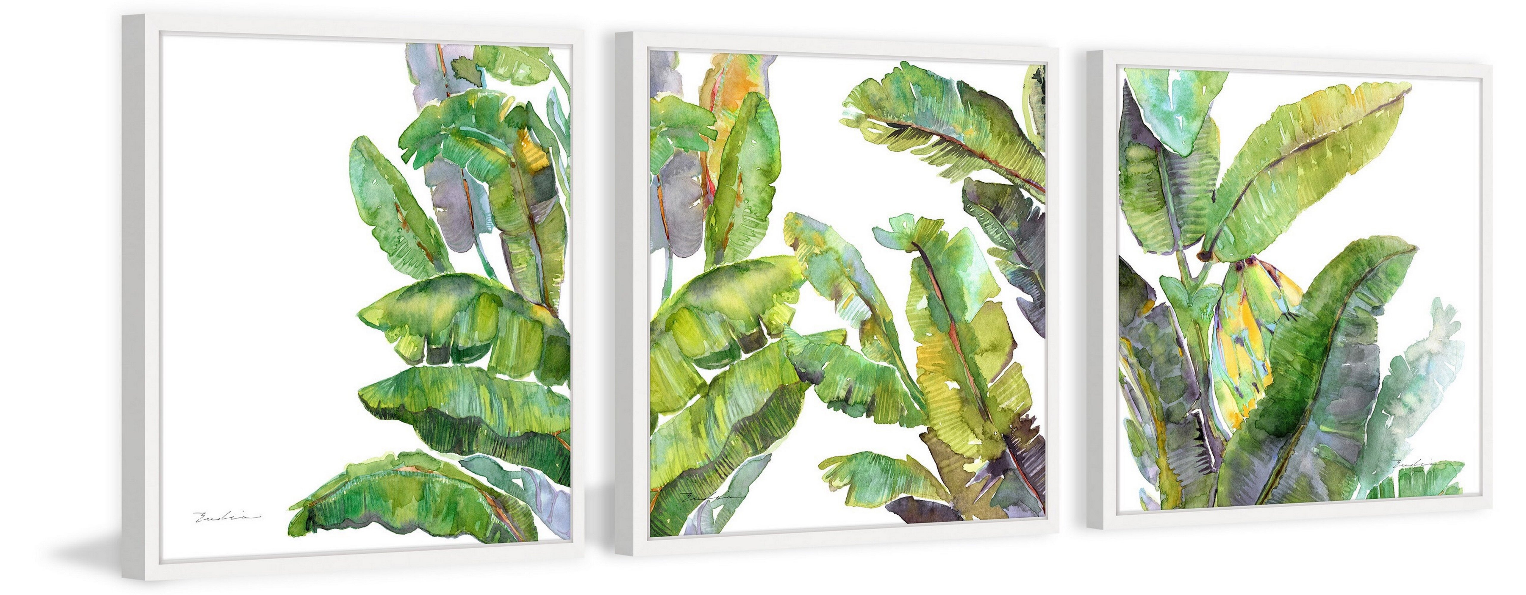 Bay Isle Home Oh Banana Leaves Iii Triptych By Evelia Watercolor Painting Framed Print Set Wayfair