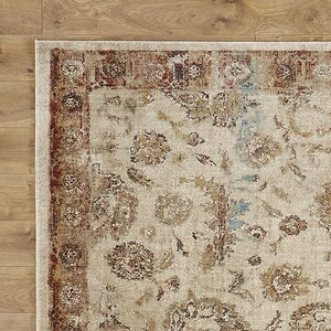 Jeffrey Beige/Rusty Brown Area Rug