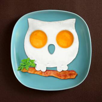 Funny Side Up Skull Owl Egg Shaper Fred And Friends Set of 2 NEW Silicone Mold