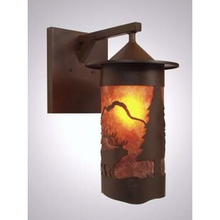 Steel Partners Elk 1-Light Outdoor Wall Lantern