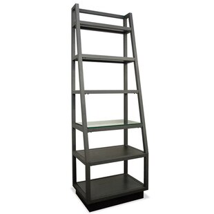 Mackinnon Ladder Bookcase