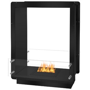 Ethanol Fireplace by Ignis Products
