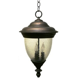 Phillipstown 4-Light Outdoor Hanging Lantern