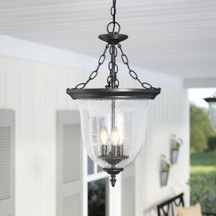 Laurel Foundry Modern Farmhouse Maxillaria 3-Light Outdoor Pendant