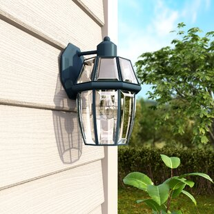 Lavergne 1-Light Outdoor Wall Lantern