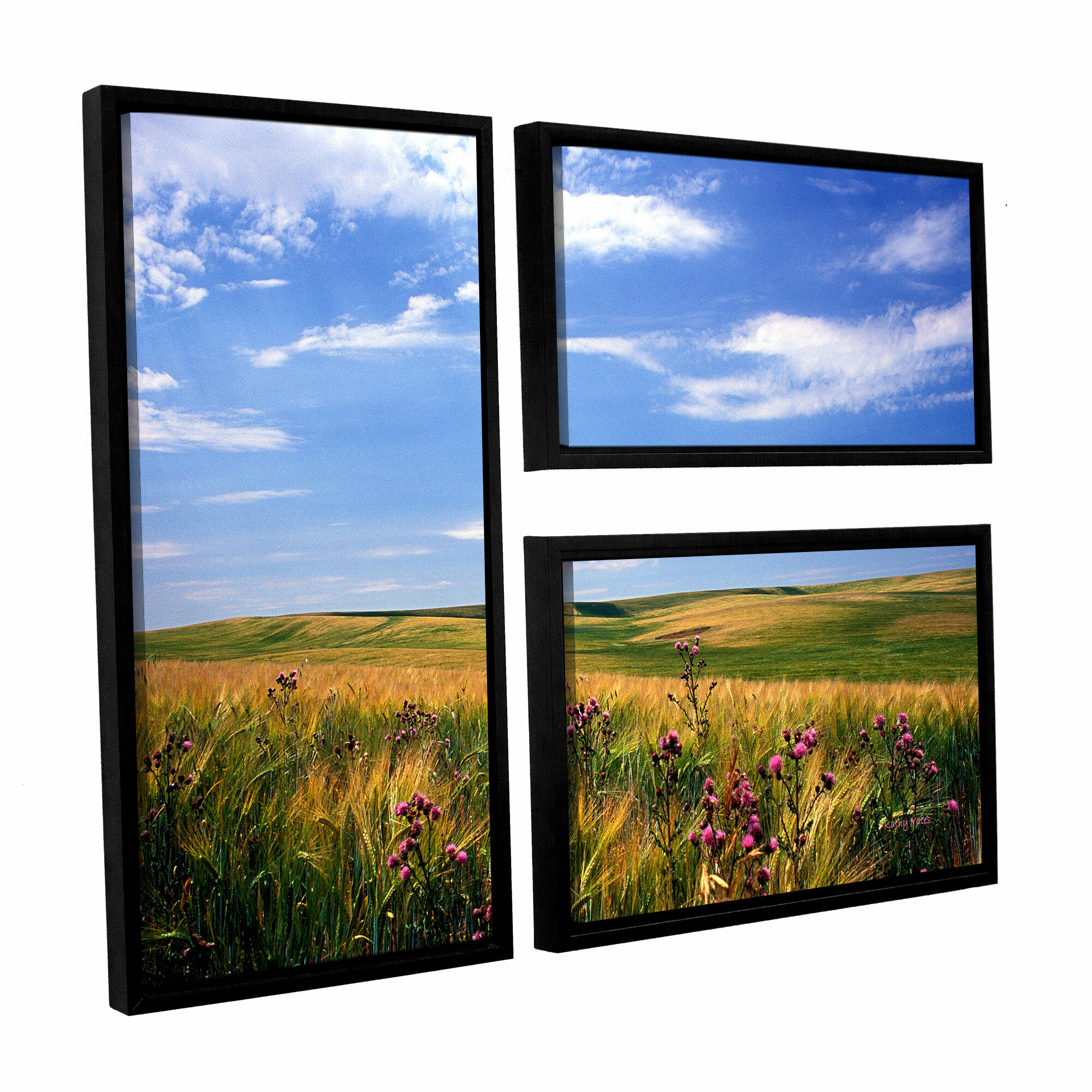 Artwall Field Of Dreams By Kathy Yates 3 Piece Framed Photographic Print Set Wayfair