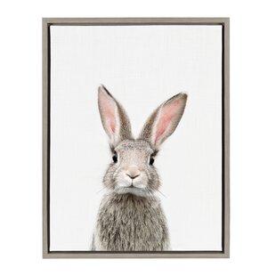 'Female Baby Bunny Rabbit' Framed Art