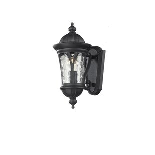 Lowther 1-Light Outdoor Wall Lantern