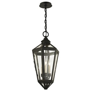 Dhavale 3-Light Outdoor Hanging Lantern