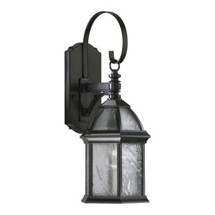 Three Posts Otterville Modern 1-Light Outdoor Wall Lantern