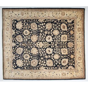 Great choice One-of-a-Kind Ziegler Hand-Knotted Black Area Rug By Darya Rugs