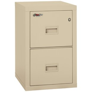Turtle Fireproof 2-Drawer Vertical File Cabinet