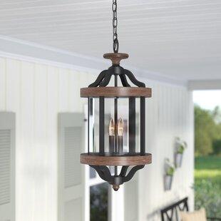 Laurel Foundry Modern Farmhouse Elisabetta 2-Light Outdoor Pendant