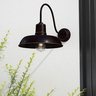 Best Reviews Chenier 1-Light Outdoor Barn Light By Ebern Designs