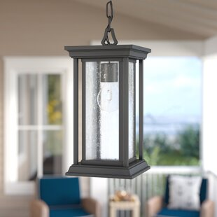 Samanda 1-Light Outdoor Hanging Lantern By Darby Home Co Ceiling Lights