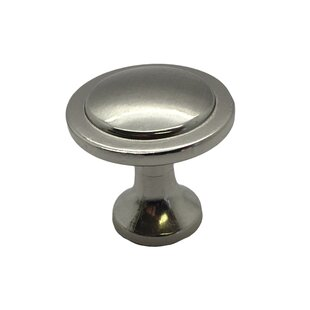 Handle Stainless Steel Oval Knob (Set of 2)